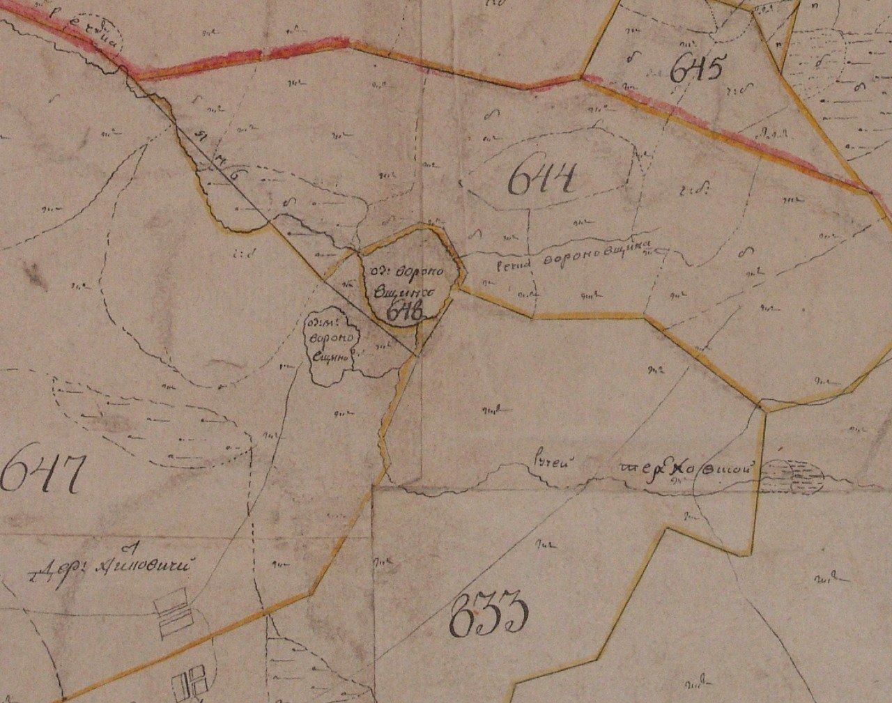 Фрагмент плана Генерального межевания Лугского уезда конца XVIII века.