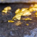 Золотодобыча для всех желающих?